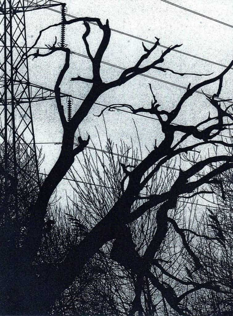 Winter Contrasts Photopolymer Etching