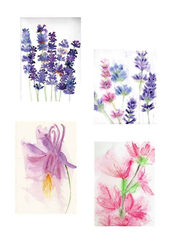 watercolour, flowers, painting, garden flowers,