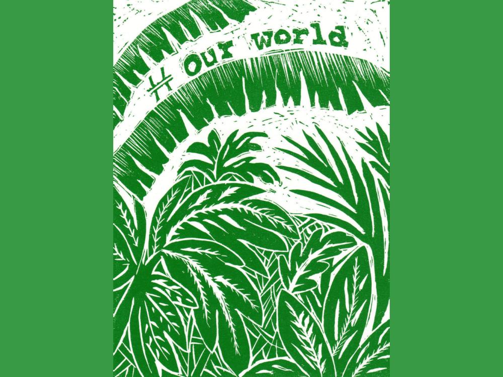 # Our World Summer Green
